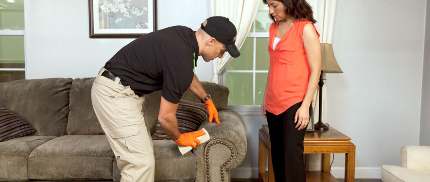 Big Bear Lake, CA carpet upholstery cleaning